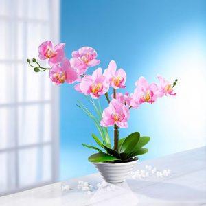 Cserepes selyemvirág orchidea- élethű